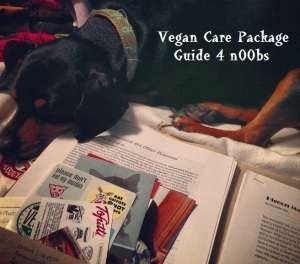 Vegan Care Package Guide